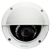 D-Link DCS 6513 Full HD WDR Day & Night Outdoor Dome Network Camera - netwerkbewakingscamera